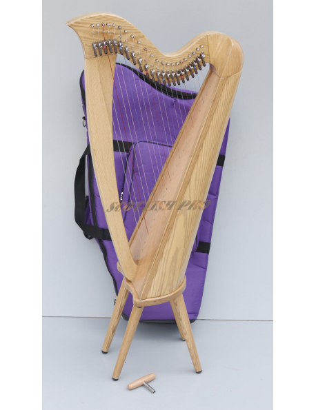 New 22 Strings Harp, Fully Back round Levered and Carry BagHarp